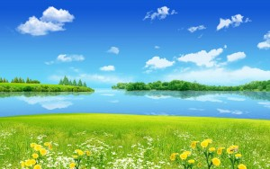 6960385-summer-backgrounds